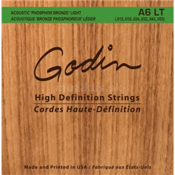 GODIN Strings Acoustic Guitar LT
