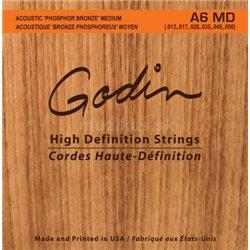 GODIN Strings Acoustic Guitar MD