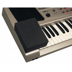 Warwick RB 21000 B PITCH BENDER COVER pro KEYBOARDS
