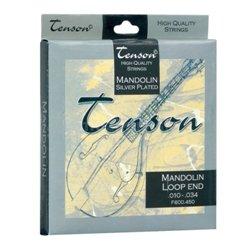 GEWApure Struny pro Mandolínu Tenson Ocel .010-.034, Loop End Sada+