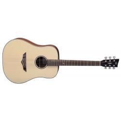 Akustická kytara RT-10 Root