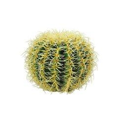 Kulatý zlatý kaktus, 27 cm