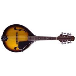 Stagg M40 S, mandolína