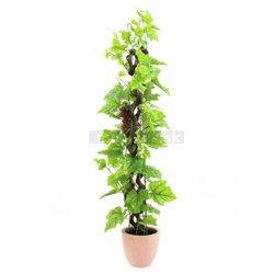 Vinná réva s hrozny, 160 cm
