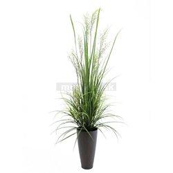 """Riečne tráva """"apríl"""", 175 cm"""