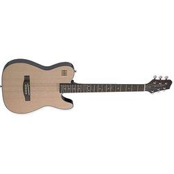 James Neligan EW3000CN elektrická gitara Folk