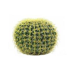 Okrúhly zlatý kaktus, 37cm