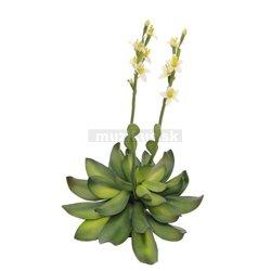 Skalné ruže žltá, 32cm