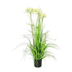 Jarná tráva v kvetináči, 120cm