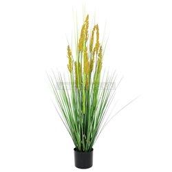 Polní tráva s klasy, 120cm