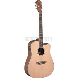 James Neligan ASY-DCE, elektroakustická gitara
