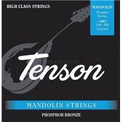 PURE GEWA Struny pro Mandolínu Tenson Fosfor bronz .010-.034, Loop End Sada+