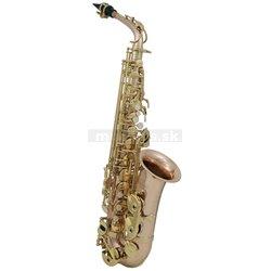 PURE GEWA Eb-Alt Saxofon Roy Benson AS202G AS-202G