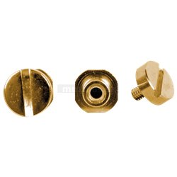 TonePros SS1 - Locking Studs - Gold