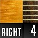Warwick Masterbuilt Corvette $$, 4-String - Honey Violin Transparent Satin