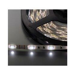 LEDS-55MP/WS