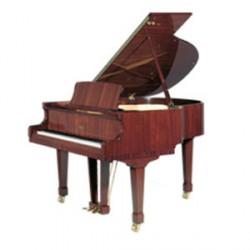 Petrof P V /klavír/