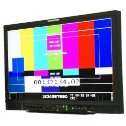 JVC - Pro Video DT-R24L4D