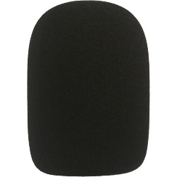 Electro-Voice WSPL-3