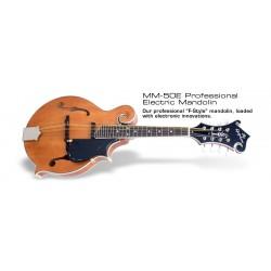 Epiphone MM-50E F-Style elektroakustická mandolína