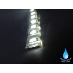 LED páska SMD3528, studená biela, 12V, 1m, IP54, 60 LED/m