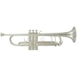 Roy Benson Bb-trumpeta TR-402 Pro série TR-402S